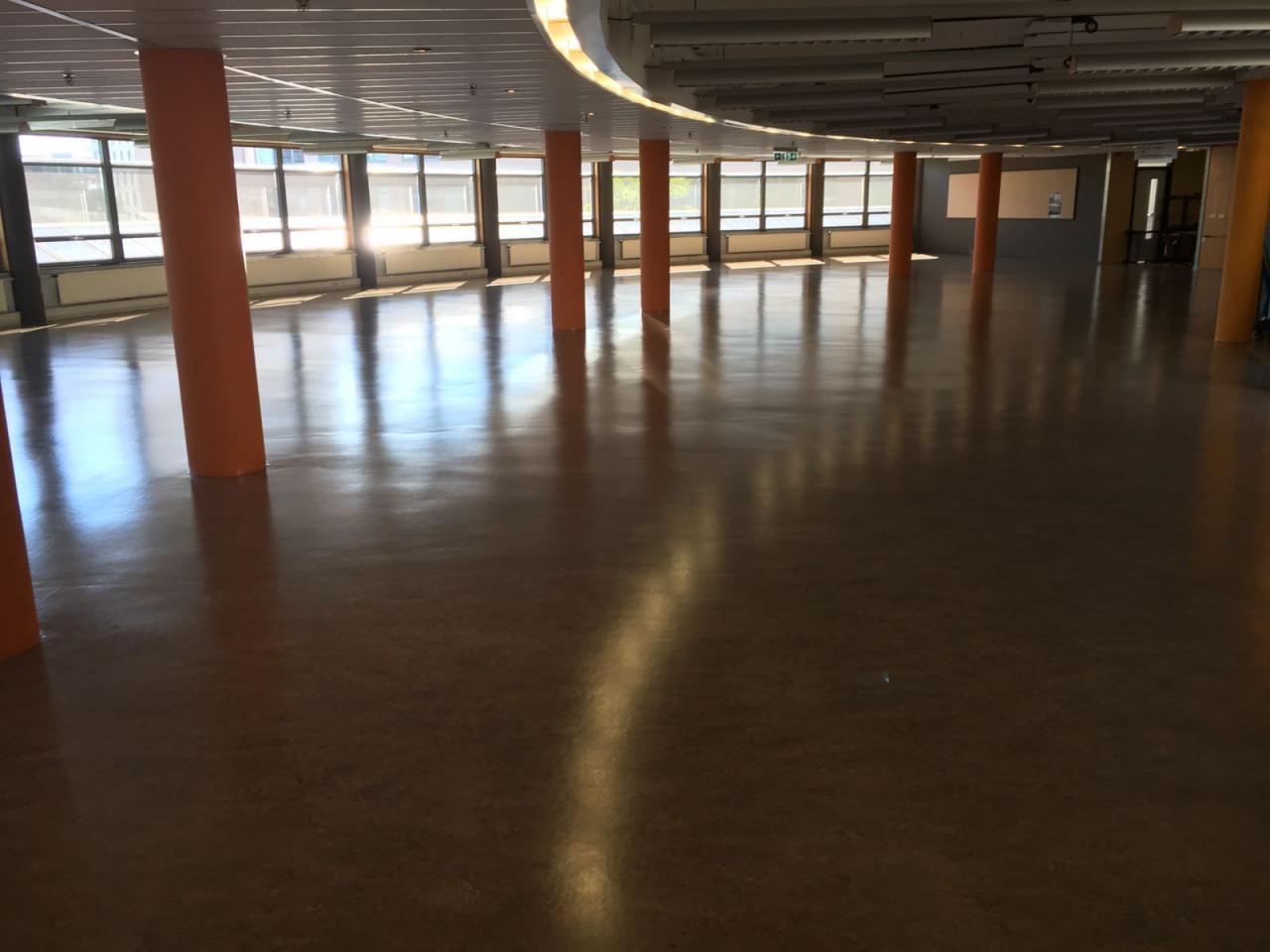 kosten nieuwe vloer linoleum vloeren zien er weer uit als